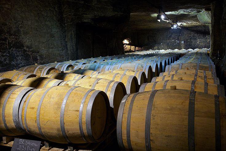 Épinglé par Emmanuelle Kaps sur Les Régions viticoles de France