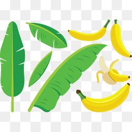 Green Leaves Yellow Banana Peeling Fruits Characteristic Food Leaves