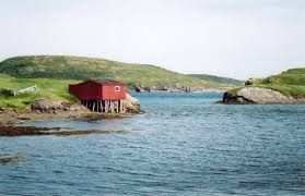 Image result for newfoundland scenery