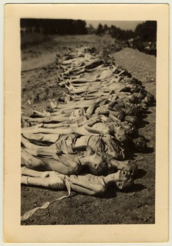 View of a row of corpses awaiting burial in the Mauthausen concentration camp following liberation. [Photograph #70154]   Date:Tuesday, May 01, 1945  Locale:Mauthausen, [Upper Austria] Austria  Photographer:Geroge Pippin  Credit:United States Holocaust Memorial Museum, courtesy of Wesley M. Burritt  Copyright:United States Holocaust Memorial Museum