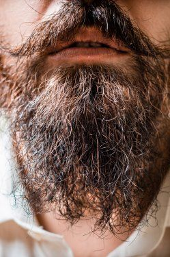 Hipster Beard Transplants Are a Thing