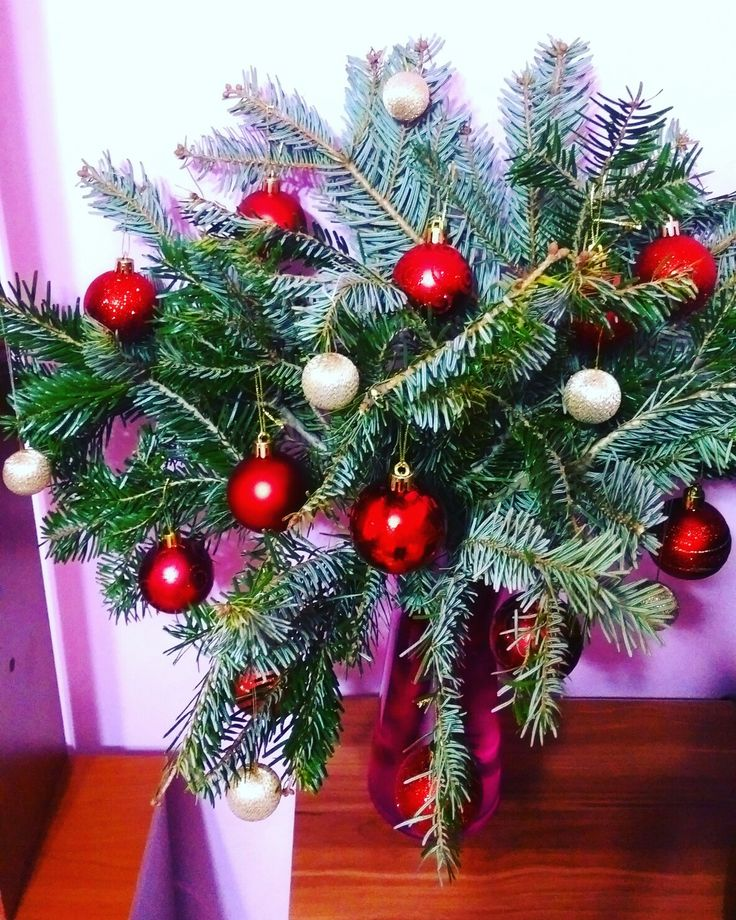 My little Christmas tree 🎄