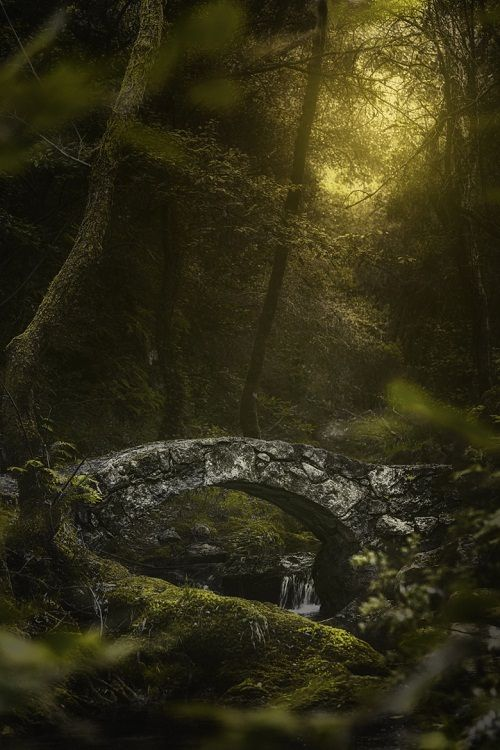 ponderation:  Cross worlds by jeanjoaquim