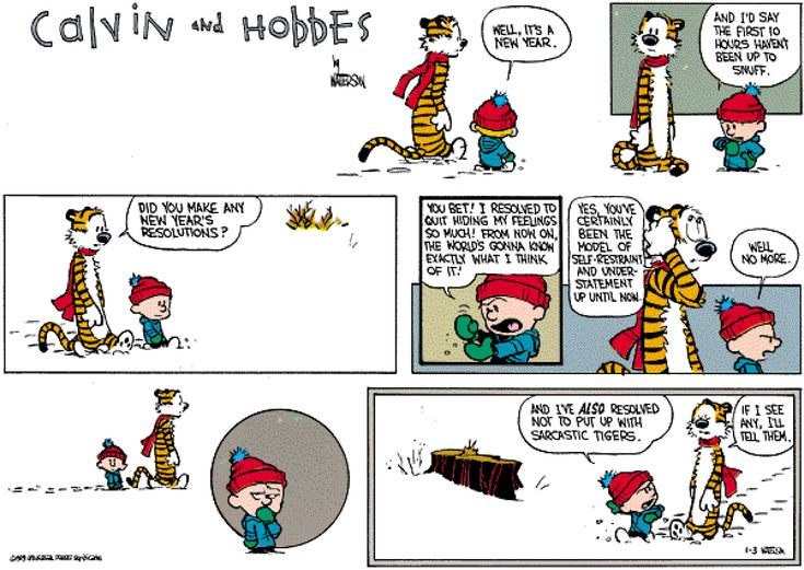 calvin and hobbes | Calvin & Hobbes – Resolutions 7 | On Target
