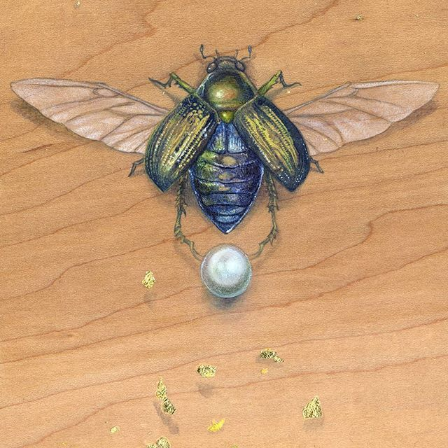 Scarab Watercolor Painted On Wood With The Use Of