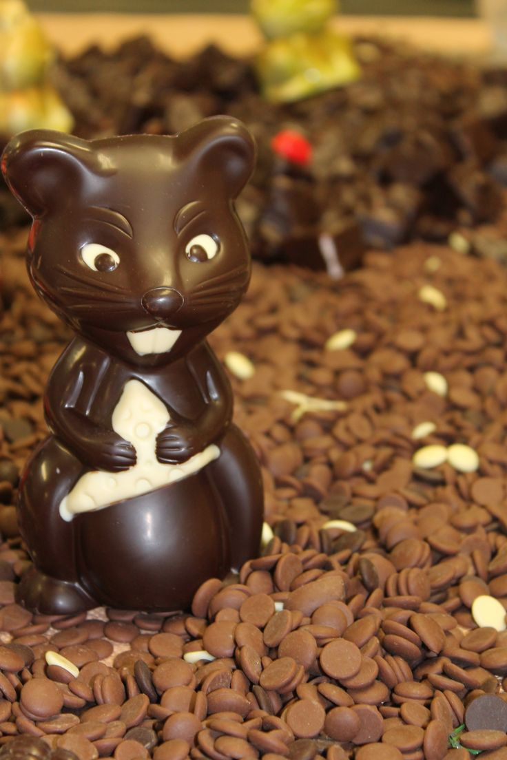 Chocolate mouse on display in Bennetts of Mangawhai chocolate shop