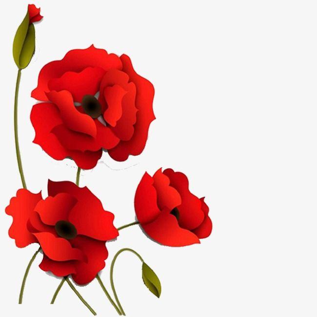 Three Dimensional Flores Rojas Flores Tridimensionales Vector Flowers Flores Rojas Png Y Psd Para Descargar Gratis Pngtree Flores Rojas Amapolas Rojas Fondo Floral