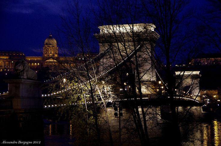 Chain Bridge (Budapest) / by Alessandro Borgogno