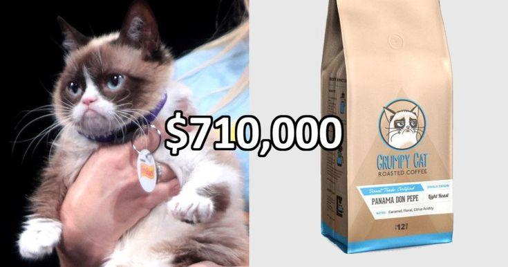 Grumpy Cat Wins $710,000 in Copyright Infringement Lawsuit