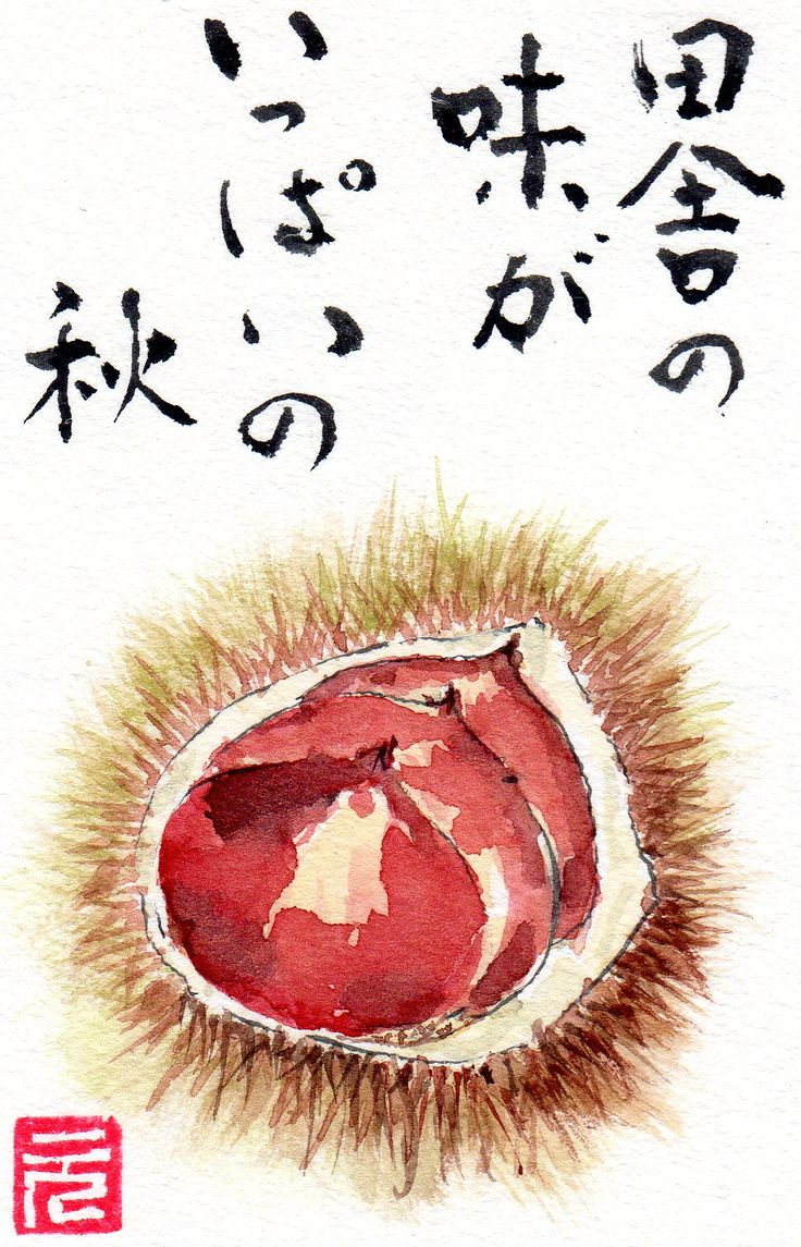 Iconic fruit for autumn in Japan - chestnuts !