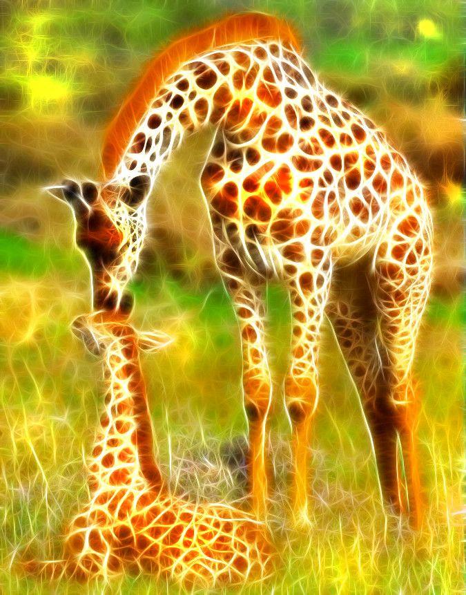 внешний жирафы-мои друзья картинки модная