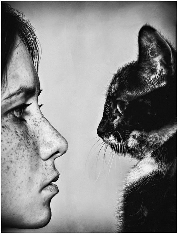 black and white, cat, freckles, girl, kitten