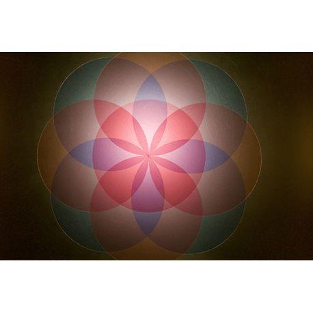 Obraz na płótnie - Abstrakcyjne kształty - dostępny w rozmiarach 150x100, 120x80, 90x60, 60x45 i 40x26 cm #fedkolor #obraz #na #płótnie #zdjęcia #fotografie #kolorowe #różowe #fioletowe #czerwone #zielone #ozdoba #dekoracja #diy #wydruki #drukowanie
