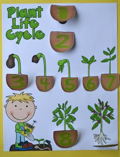 God Makes Flowers and Plants for Preschool with free printables