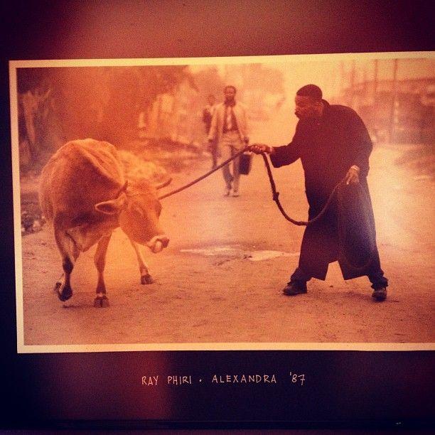 "bhubesii: "" Ray Phiri photo by Costa Economides #Stimela #band #alexandra #1987…"