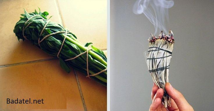 Počuli ste o dymiacich vetvičkách z rastlín? Na čo sa používajú a ako si ich vyrobíte sa dočítate v tomto článku.