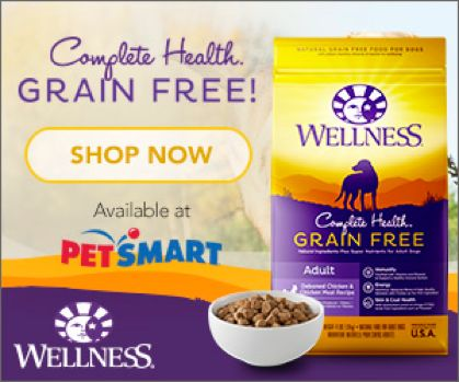 Wellness® Natural Pet Food is our Choice #GrainFreeForMe http://kellysthoughtsonthings.com/wellness-natural-pet-food/ #ad #coupon
