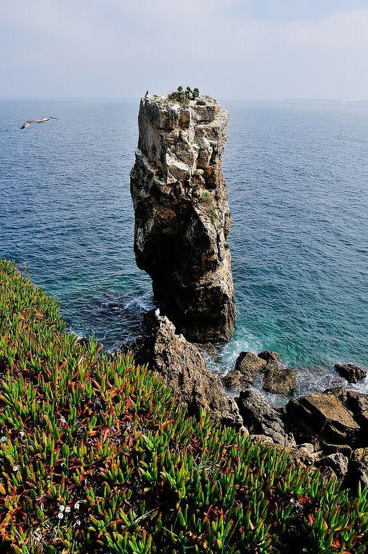Peniche, Portugal #tourisme #campingcar