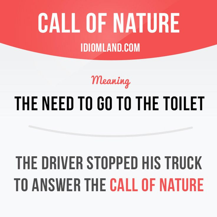 """""""Call of nature"""" is the need to go to the toilet. Example: The driver stopped his truck to answer the call of nature. Want to learn English? Choose your topic here: learzing.com #idiom #idioms #saying #sayings #phrase #phrases #expression #expressions #english #englishlanguage #learnenglish #studyenglish #language #vocabulary #dictionary #grammar #efl #esl #tesl #tefl #toefl #ielts #toeic #englishlearning #vocab #wordoftheday #phraseoftheday"""