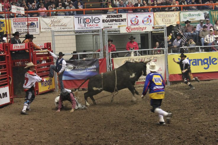9 Best Rodeo Images On Pinterest Rodeo Rodeo Life And