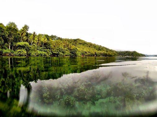 Lembeh Strait by Sara Simmonds