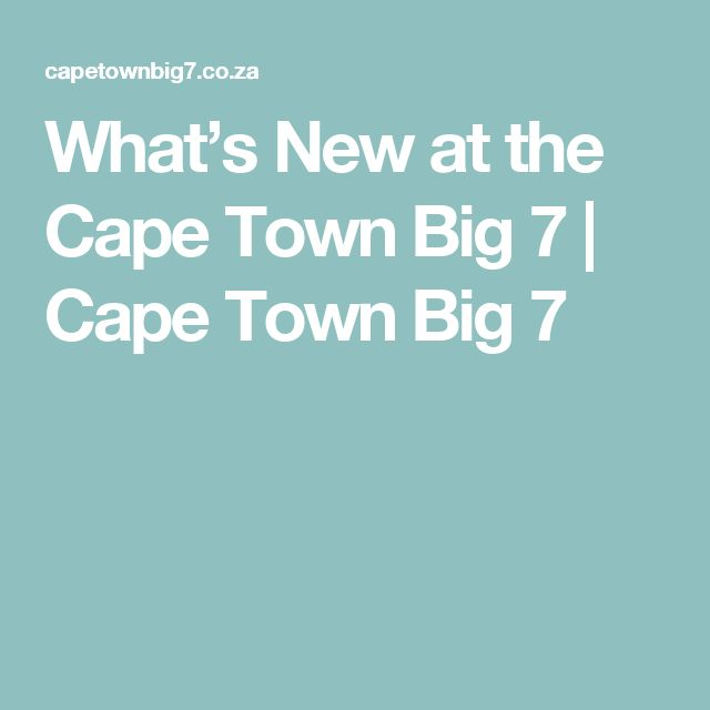 What's New at the Cape Town Big 7 | Cape Town Big 7