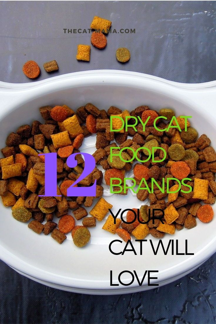 12 Best Dry Cat Food Brands To Buy For Your Cat Dry Cat Food Brands Dry Cat Food Cat Food Brands
