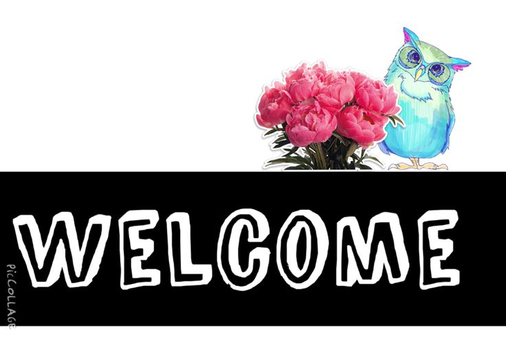 A beautiful Welcome Sign, with flowers and a owl