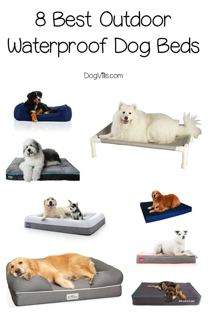 8 Best Outdoor Waterproof Dog Beds Cool Dog Beds Cute Dog