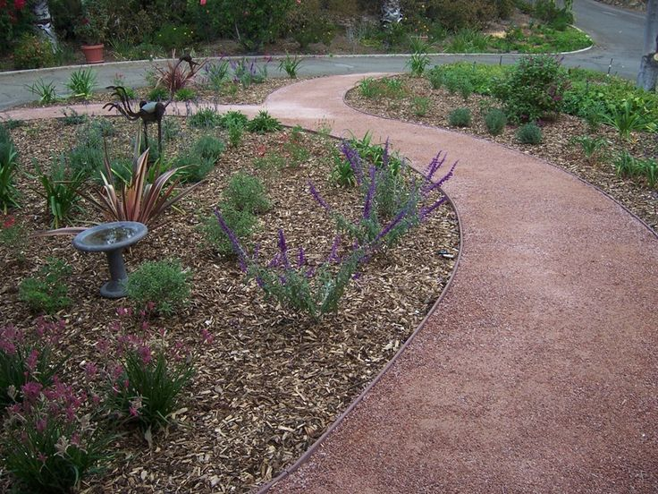 1000 Images About Driveway Ideas On Pinterest Hedges