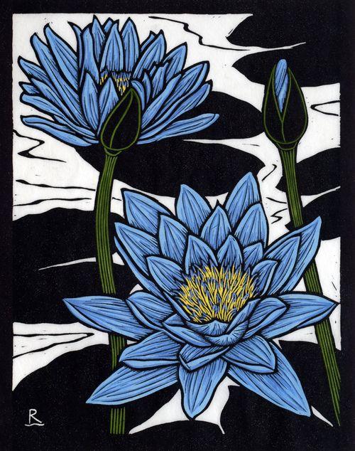 Rachel Newling BLUE WATERLILY 28 X 22 CM EDITION OF 50 HAND COLOURED LINOCUT ON HANDMADE JAPANESE PAPER $500
