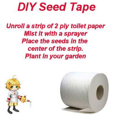 124 Best Images About Planter Ideas On Pinterest