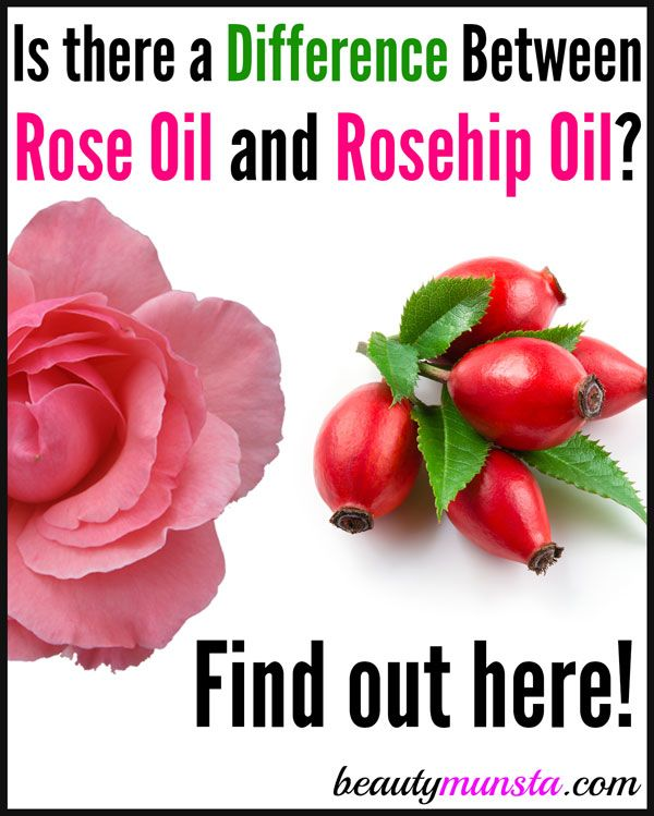 Is there a Difference between Rose Oil and Rosehip Oil