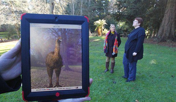 Otorohanga Kiwi House plans to create virtual Moa.