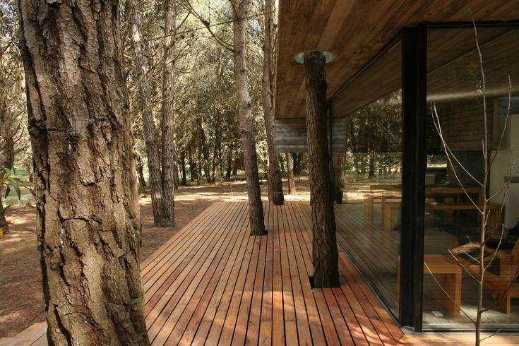 Diseño de casa de campo pequeña de un piso | Construye Hogar