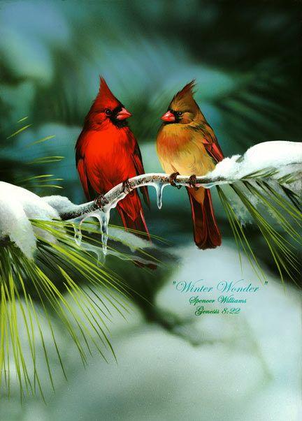 animals painting | Bird Paintings, animal & wildlife paintings, paintings of animals ...