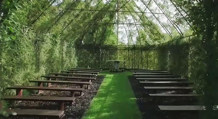 Мужчина 4 года «выращивал» храм из живых деревьев – Фитнес для мозга