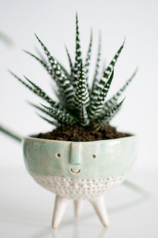 On Display: Succulent Plant Pot by Igor Josifovic