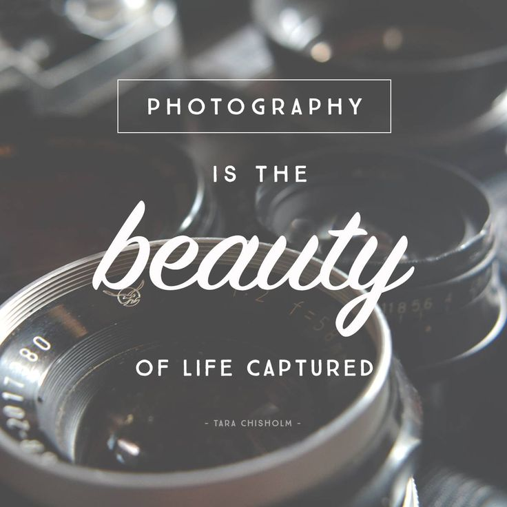12 Quotes Inspire Photography Journey Photo Biz Articles