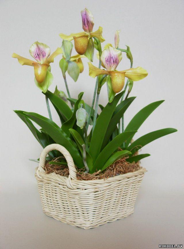 Цветок орхидея Леди Слиппер из полимерной глины, мастер класс часть 1. - Цветы из полимерной глины - Полимерная глина - Каталог статей - Рукодел.TV