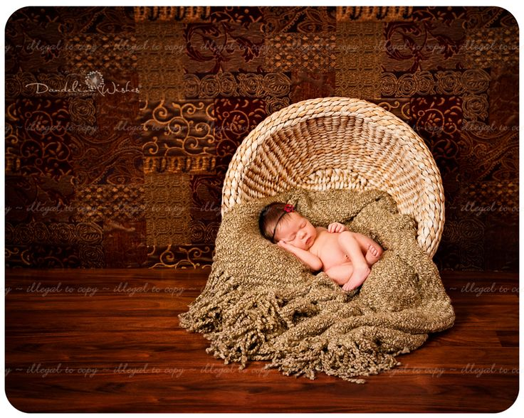 Newborn photography basket