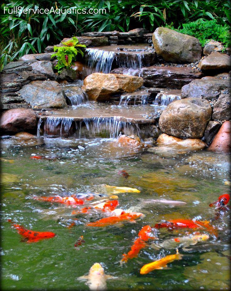 Waterfall with koi swimming beneath it Designed