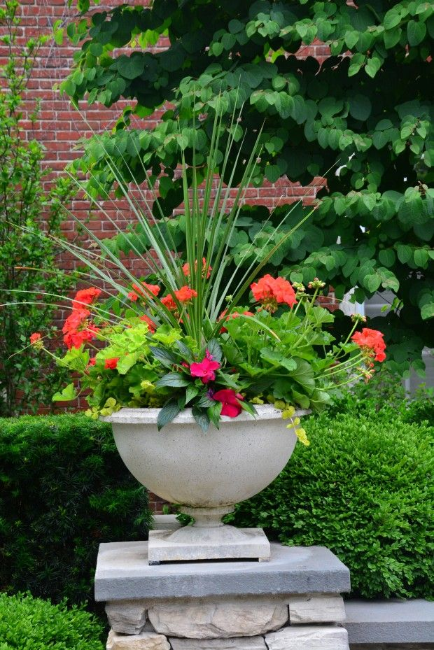 867 best images about flowers gardens containers perennials annuals on pinterest - Container gardens for sun ...