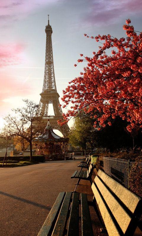 Parijs http://www.stedentripdirect.nl/lastminutes/frankrijk/parijs/parijs.html?utm_source=pinterestutm_medium=textlinkutm_campaign=socialmedia