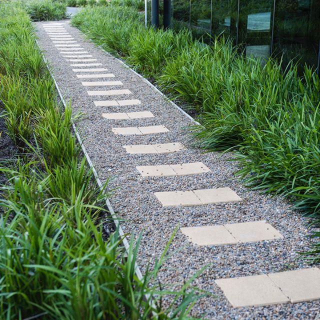 P R O J E C T - Along the garden path. Mass planting of native grasses surround the minimalist garden path for big impact.