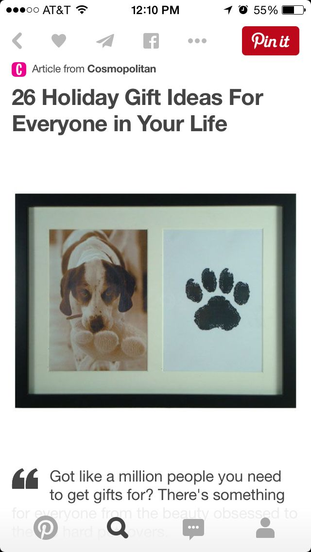 Cute dog pic and paw print