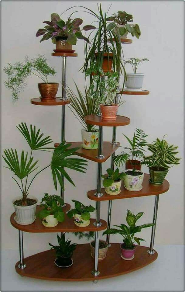 Plant Pots, Flower Pots, Flowers, Plant Holders, Plant Stands, Houseplants,  Wooden Diy, Indoor House Plants, Bonsai