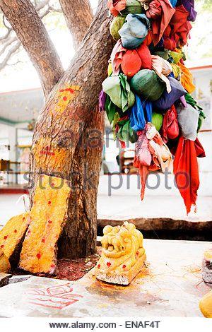 Wish Tree and shrine in Durgadevi Temple, Anegundi. - Stock Photo