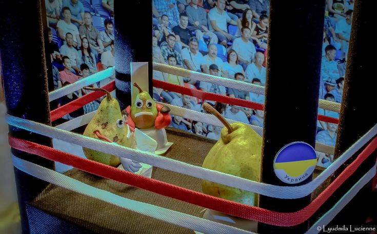 - Yes, Klitschko… But you younger! - Так, Кличко ... Зате ти молодший!                     #originalcontent  #Klitschko  #boxing  #humor  #photosmile  #ring  #spectators #LyudmilaLucienne #funny