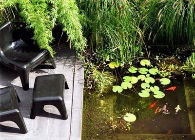Dana Garden Design: laghetto con pesci rossi